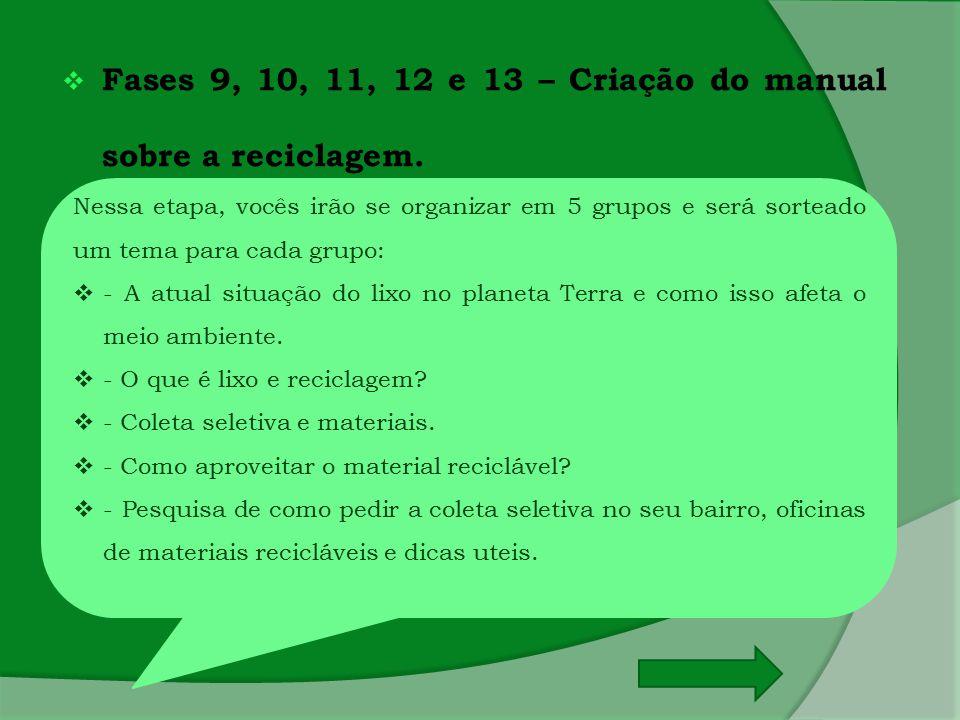  Fases 9, 10, 11, 12 e 13 – Criação do manual sobre a reciclagem. Nessa etapa, vocês irão se organizar em 5 grupos e será sorteado um tema para cada