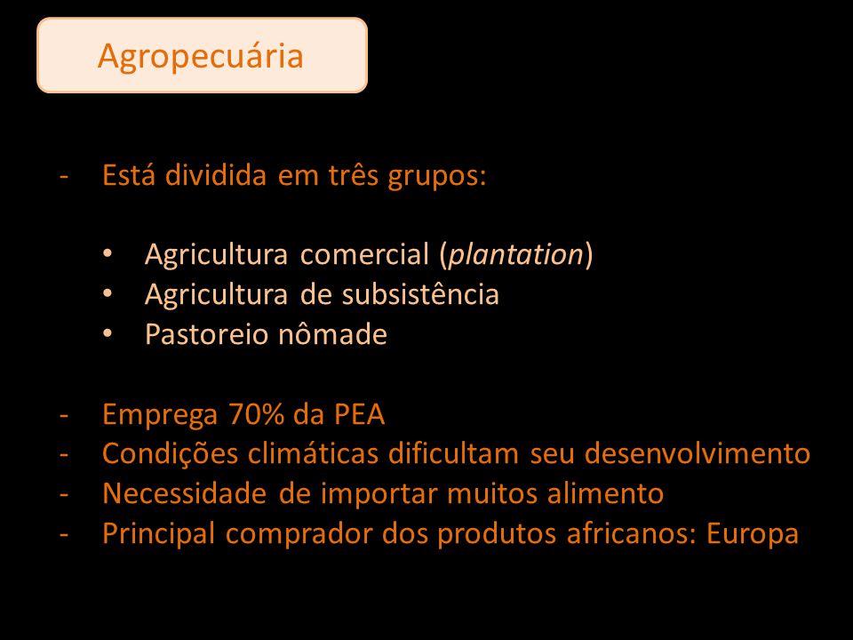Agropecuária -Está dividida em três grupos: Agricultura comercial (plantation) Agricultura de subsistência Pastoreio nômade -Emprega 70% da PEA -Condi