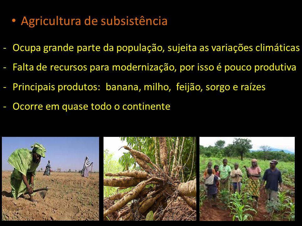 -Ocupa grande parte da população, sujeita as variações climáticas -Falta de recursos para modernização, por isso é pouco produtiva -Principais produto