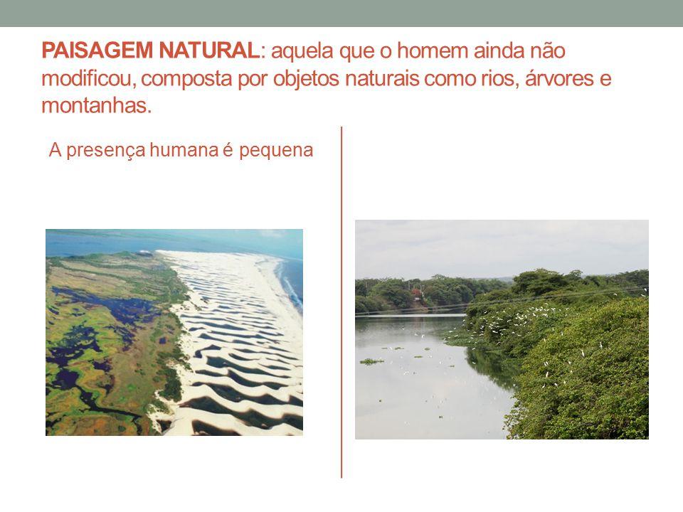 PAISAGEM NATURAL: aquela que o homem ainda não modificou, composta por objetos naturais como rios, árvores e montanhas.