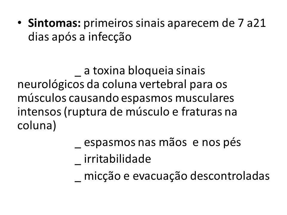 Sintomas: primeiros sinais aparecem de 7 a21 dias após a infecção _ a toxina bloqueia sinais neurológicos da coluna vertebral para os músculos causand