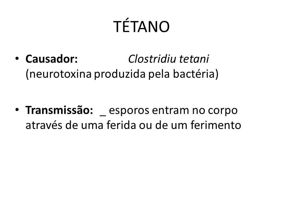 TÉTANO Causador:Clostridiu tetani (neurotoxina produzida pela bactéria) Transmissão:_ esporos entram no corpo através de uma ferida ou de um ferimento