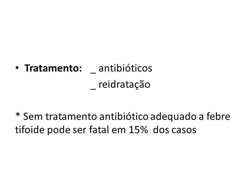 Tratamento:_ antibióticos _ reidratação * Sem tratamento antibiótico adequado a febre tifoide pode ser fatal em 15% dos casos