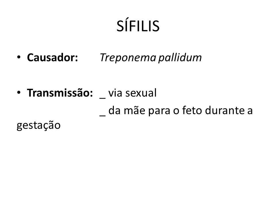SÍFILIS Causador:Treponema pallidum Transmissão:_ via sexual _ da mãe para o feto durante a gestação