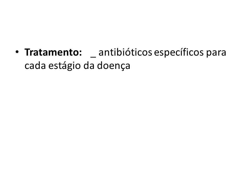 Tratamento:_ antibióticos específicos para cada estágio da doença