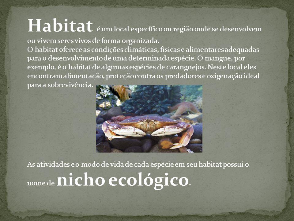 Habitat é um local específico ou região onde se desenvolvem ou vivem seres vivos de forma organizada. O habitat oferece as condições climáticas, físic