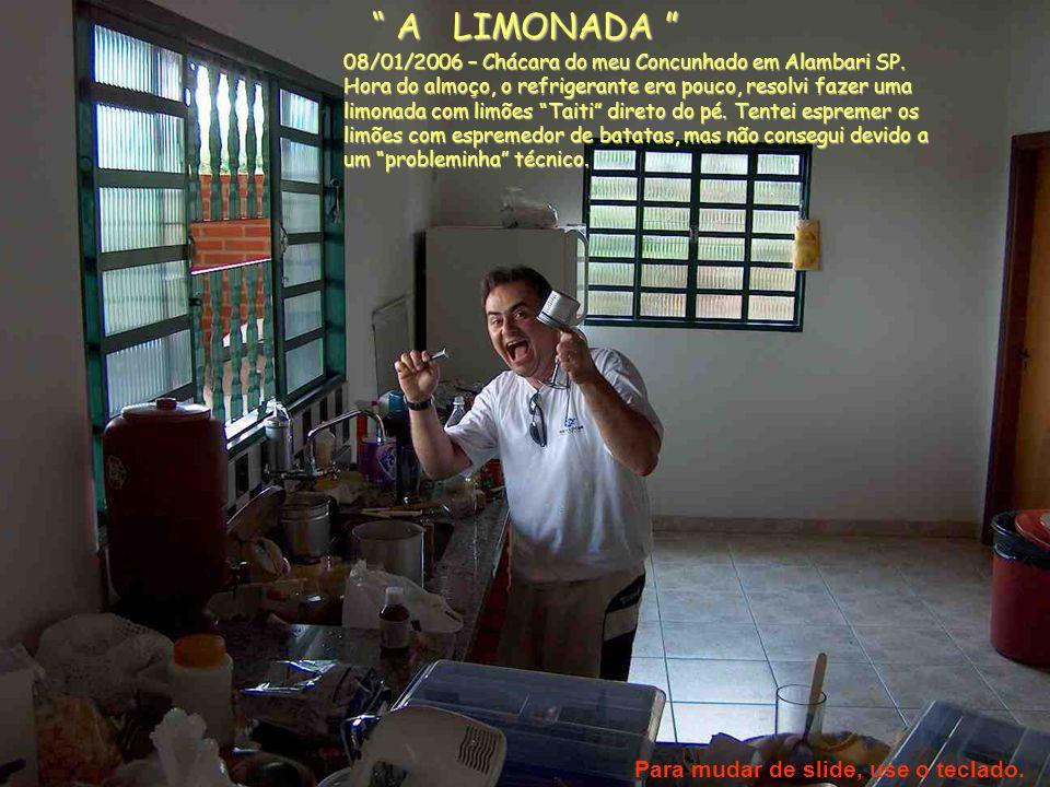 """"""" A LIMONADA """" 08/01/2006 – Chácara do meu Concunhado em Alambari SP. Hora do almoço, o refrigerante era pouco, resolvi fazer uma limonada com limões"""