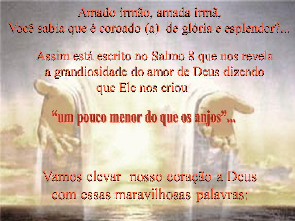 (Salmo 8,6)