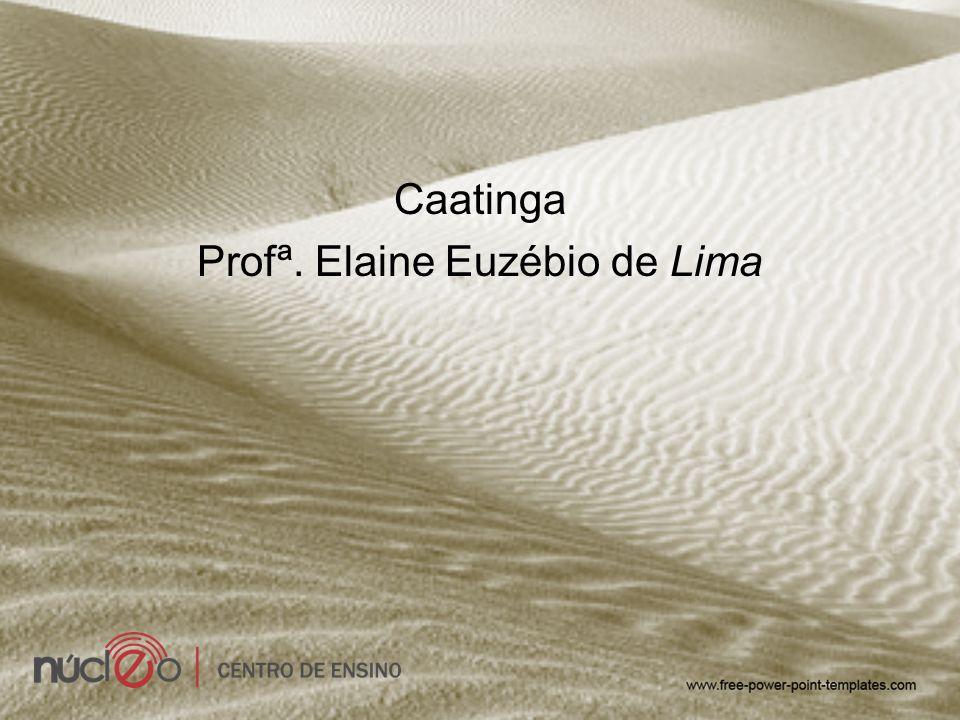 Caatinga Profª. Elaine Euzébio de Lima