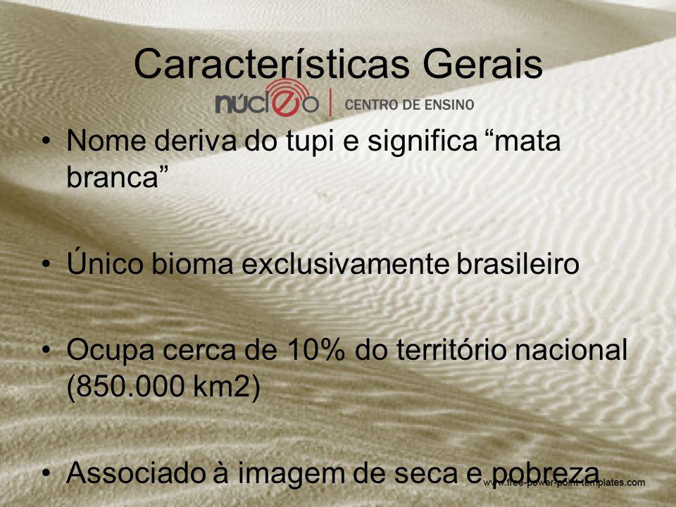 "Características Gerais Nome deriva do tupi e significa ""mata branca"" Único bioma exclusivamente brasileiro Ocupa cerca de 10% do território nacional ("