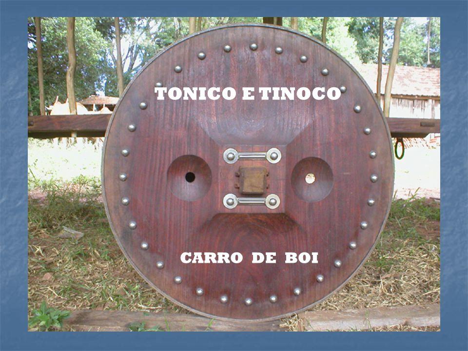 TONICO E TINOCO CARRO DE BOI