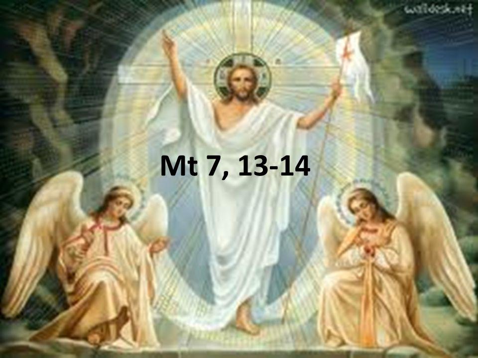 Mt 7, 13-14