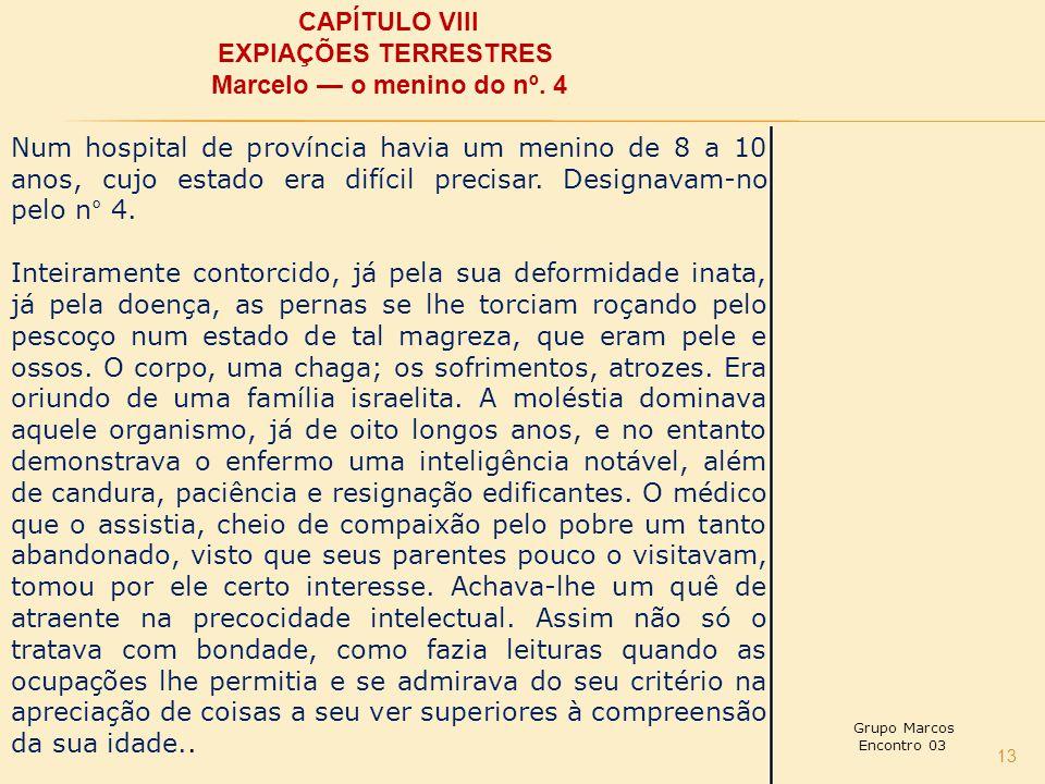 13 CAPÍTULO VIII EXPIAÇÕES TERRESTRES Marcelo — o menino do nº.