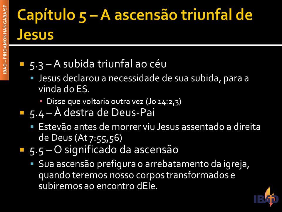  5.3 – A subida triunfal ao céu  Jesus declarou a necessidade de sua subida, para a vinda do ES.