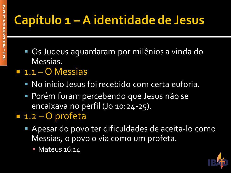  A ascensão de Cristo não possui tantos registros, mas reveste-se da mesma importância teológica.
