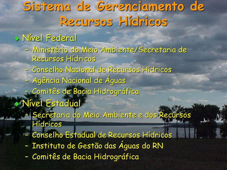  Nível Federal –Ministério do Meio Ambiente/Secretaria de Recursos Hídricos –Conselho Nacional de Recursos Hídricos –Agência Nacional de Águas –Comit