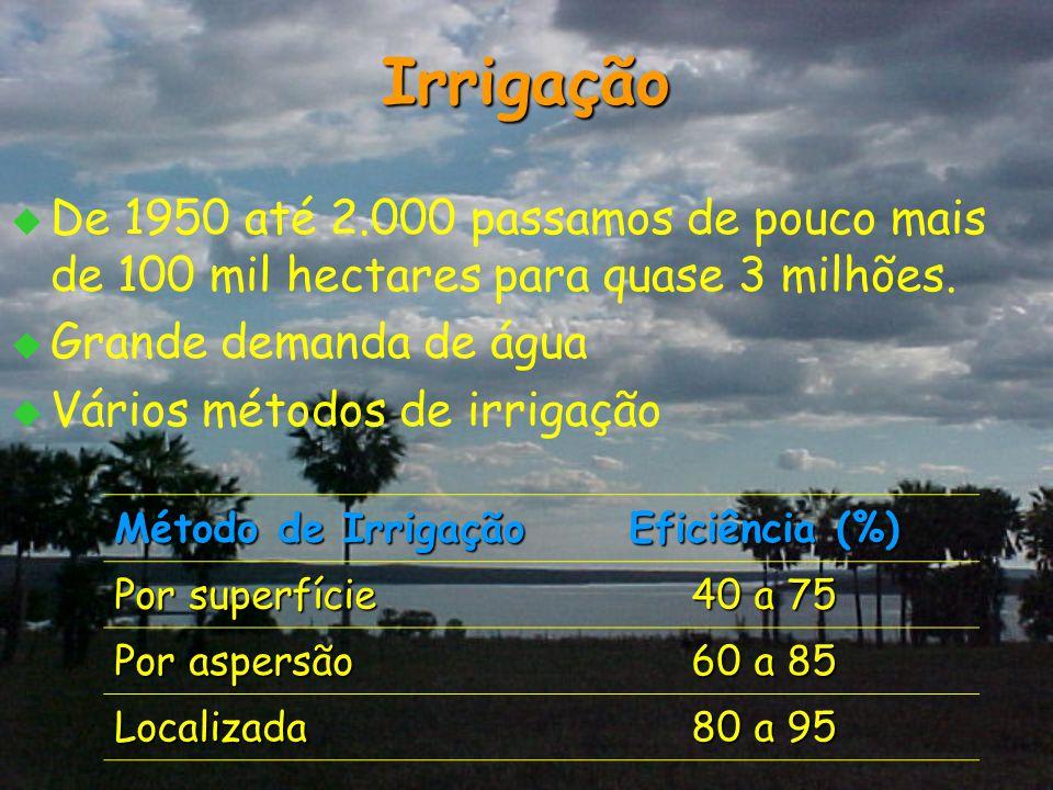 Irrigação   De 1950 até 2.000 passamos de pouco mais de 100 mil hectares para quase 3 milhões.   Grande demanda de água   Vários métodos de irri