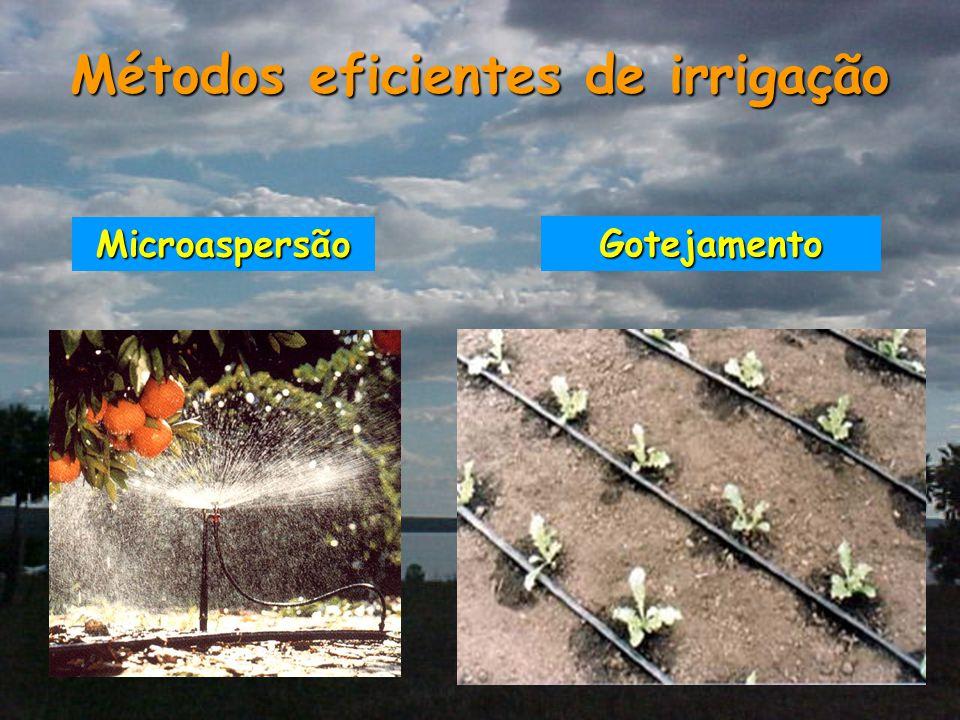 Métodos eficientes de irrigação Gotejamento Microaspersão