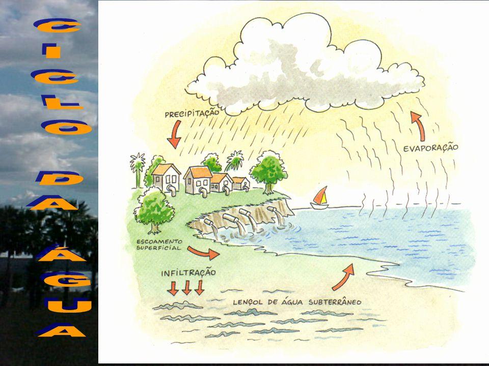 Fundamentos da Política de Recursos Hídricos  A água: –É um bem de domínio público –É um recurso natural limitado –Possui valor econômico  Em situação de escassez de água: –Prioridade para consumo humano e animal