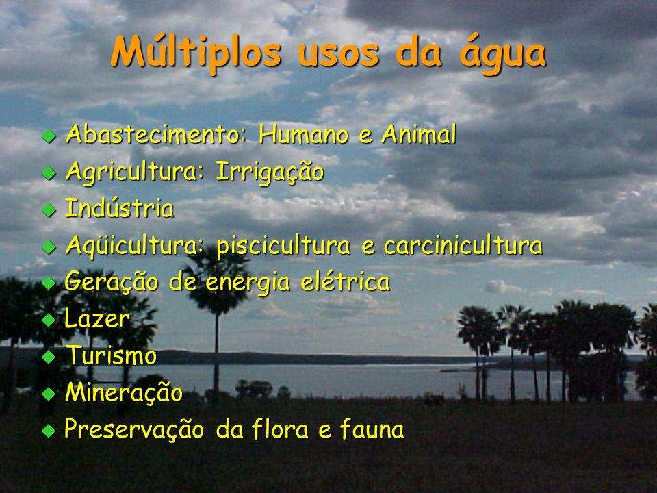 Múltiplos usos da água  Abastecimento: Humano e Animal  Agricultura: Irrigação  Indústria  Aqüicultura: piscicultura e carcinicultura  Geração de