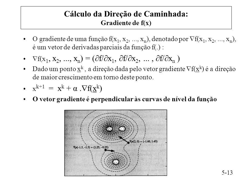 θ  f(x) xx Curva de nível xkxk Qualquer direção  x é uma direção de crescimento sempre que o seu ângulo (θ) em relação ao vetor gradiente é menor do que 90°.