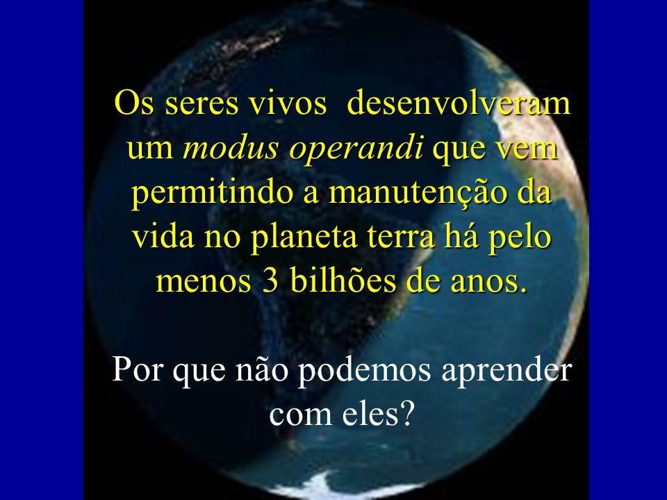 Os seres vivos desenvolveram um modus operandi que vem permitindo a manutenção da vida no planeta terra há pelo menos 3 bilhões de anos.