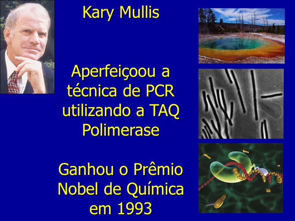 Kary Mullis Aperfeiçoou a técnica de PCR utilizando a TAQ Polimerase Ganhou o Prêmio Nobel de Química em 1993