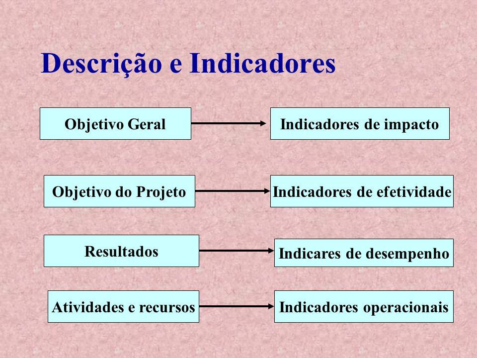 Descrição e Indicadores Objetivo Geral Objetivo do Projeto Resultados Atividades e recursosIndicadores operacionais Indicares de desempenho Indicadore
