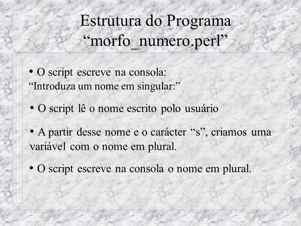 O script escreve na consola: Introduza um nome em singular: O script lê o nome escrito polo usuário O script escreve na consola o nome em plural.