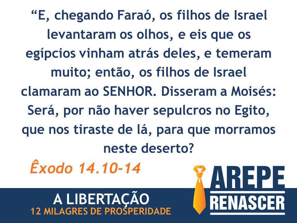 """""""E, chegando Faraó, os filhos de Israel levantaram os olhos, e eis que os egípcios vinham atrás deles, e temeram muito; então, os filhos de Israel cla"""