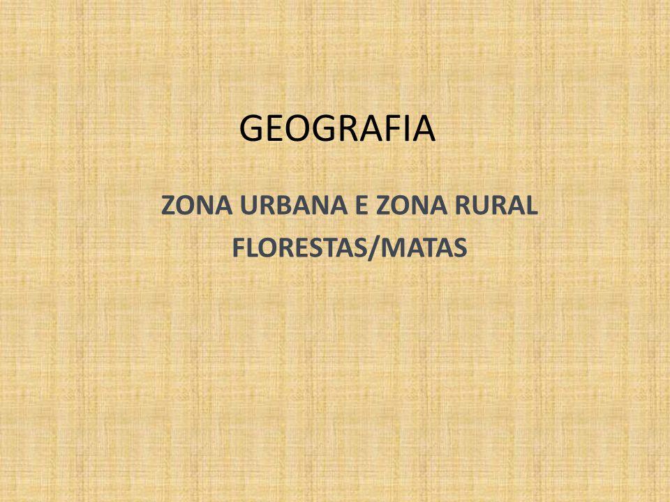 GEOGRAFIA ZONA URBANA E ZONA RURAL FLORESTAS/MATAS