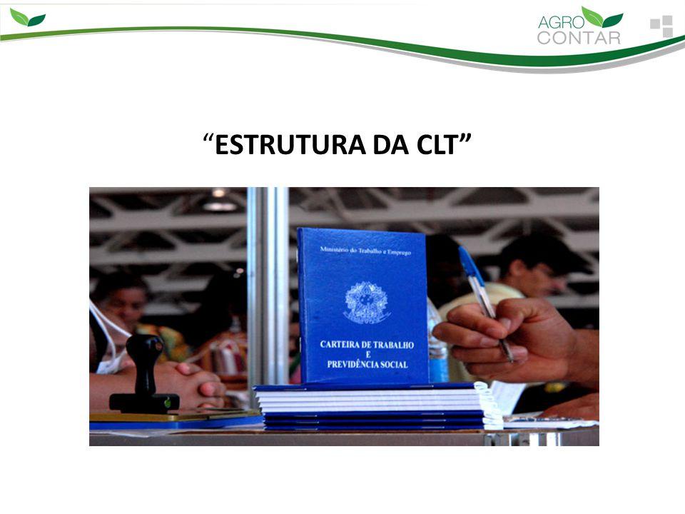 ESTRUTURA DA CLT