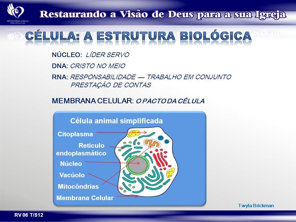 RV 06 T/S12 NÚCLEO: LÍDER SERVO DNA: CRISTO NO MEIO RNA: RESPONSABILIDADE — TRABALHO EM CONJUNTO PRESTAÇÃO DE CONTAS MEMBRANA CELULAR: O PACTO DA CÉLU