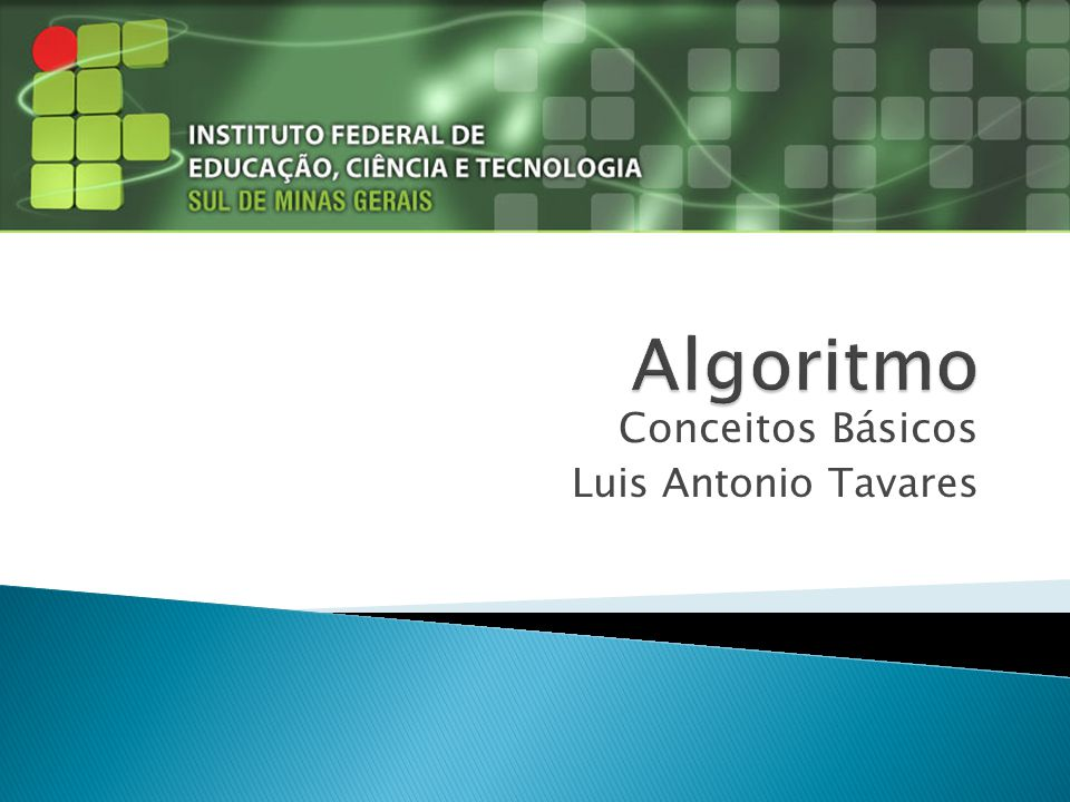 Conceitos Básicos Luis Antonio Tavares