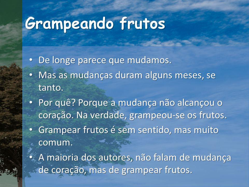 Grampeando frutos De longe parece que mudamos. De longe parece que mudamos.