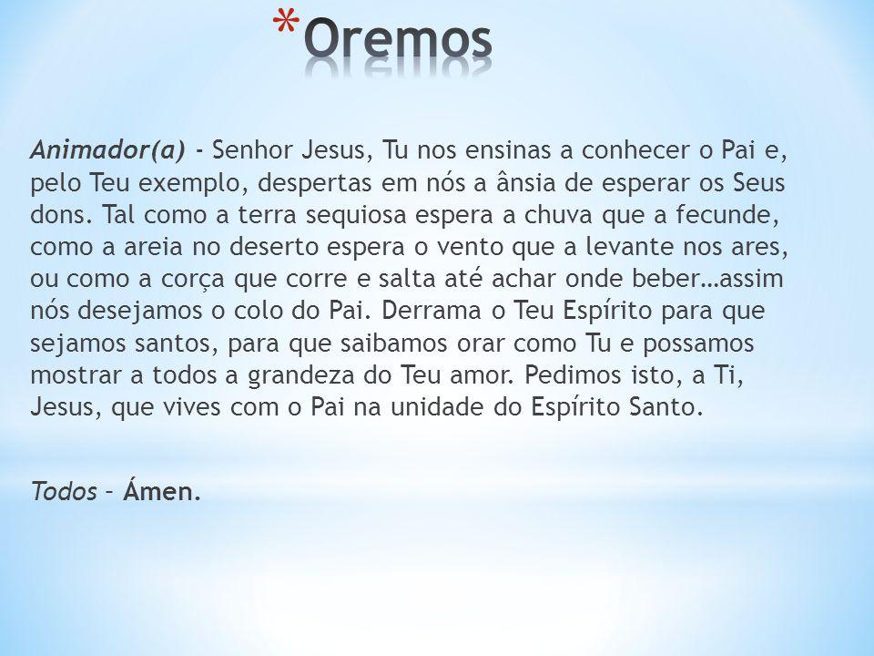 Animador(a) - Senhor Jesus, Tu nos ensinas a conhecer o Pai e, pelo Teu exemplo, despertas em nós a ânsia de esperar os Seus dons.