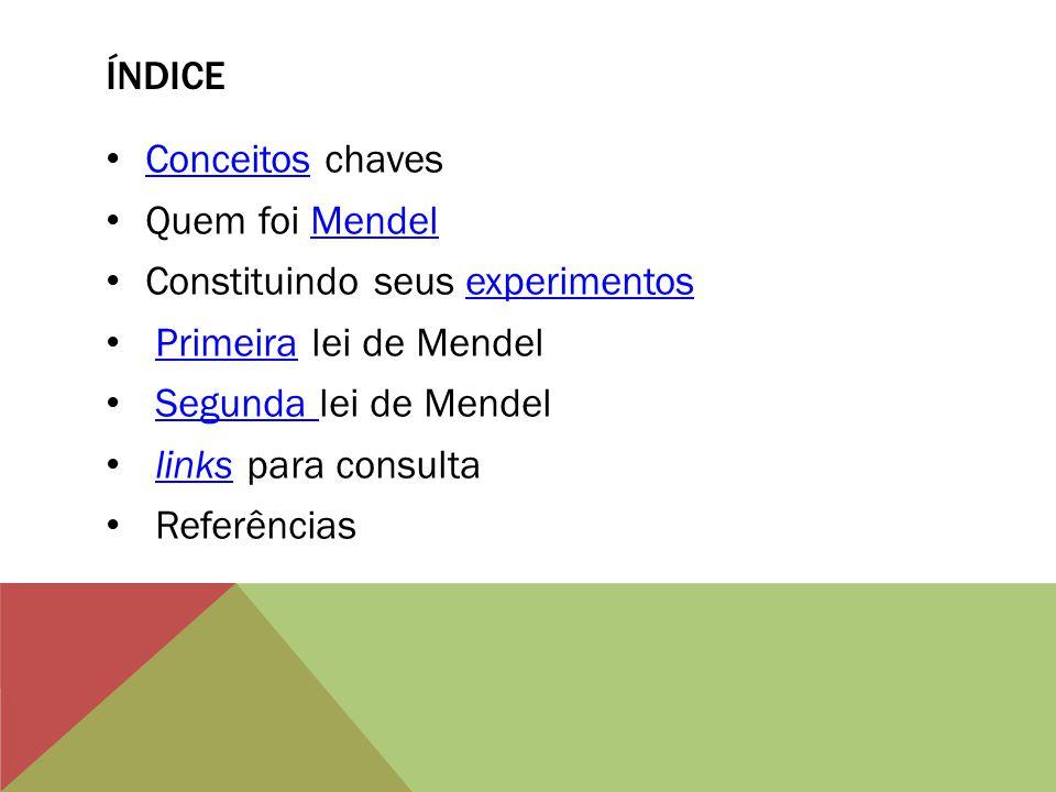 ÍNDICE Conceitos chaves Conceitos Quem foi MendelMendel Constituindo seus experimentosexperimentos Primeira lei de MendelPrimeira Segunda lei de Mende