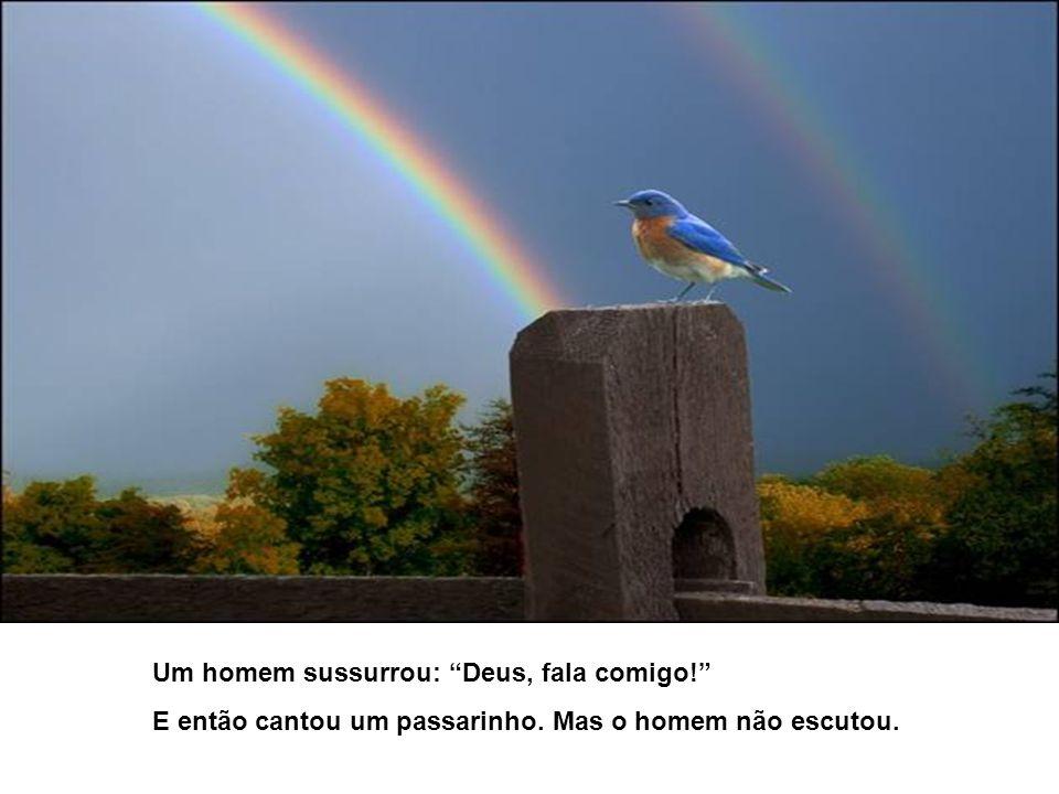 Um homem sussurrou: Deus, fala comigo! E então cantou um passarinho. Mas o homem não escutou.