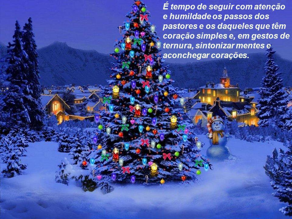 Natal é tempo... de olhar para o mundo, alimentar a chama do amor e apreciar o milagre da vida.