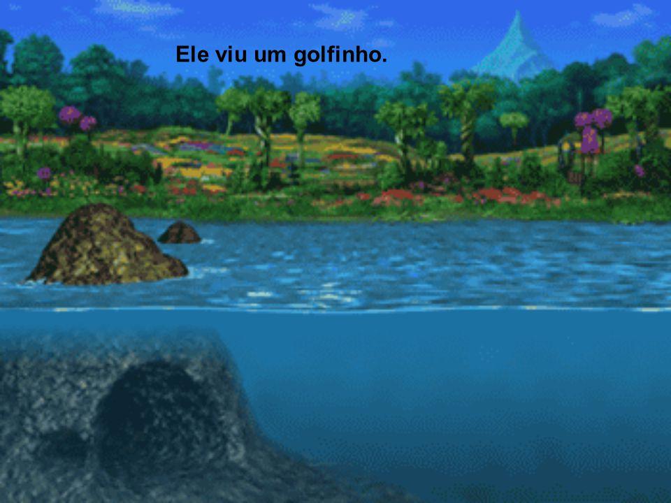 Numa floresta, o gorila estava andando feliz seguindo o curso de um rio, quando se deparou com um grande mar azul.