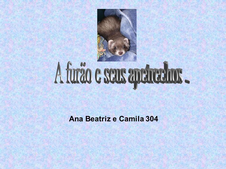 Ana Beatriz e Camila 304