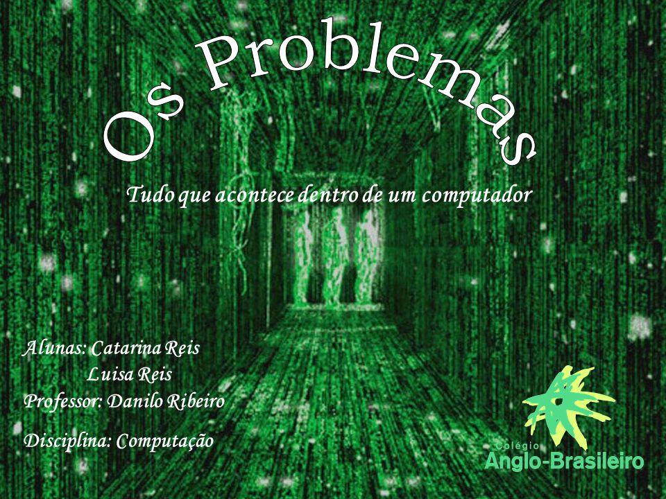 Alunas: Catarina Reis Luisa Reis Professor: Danilo Ribeiro Disciplina: Computação Tudo que acontece dentro de um computador