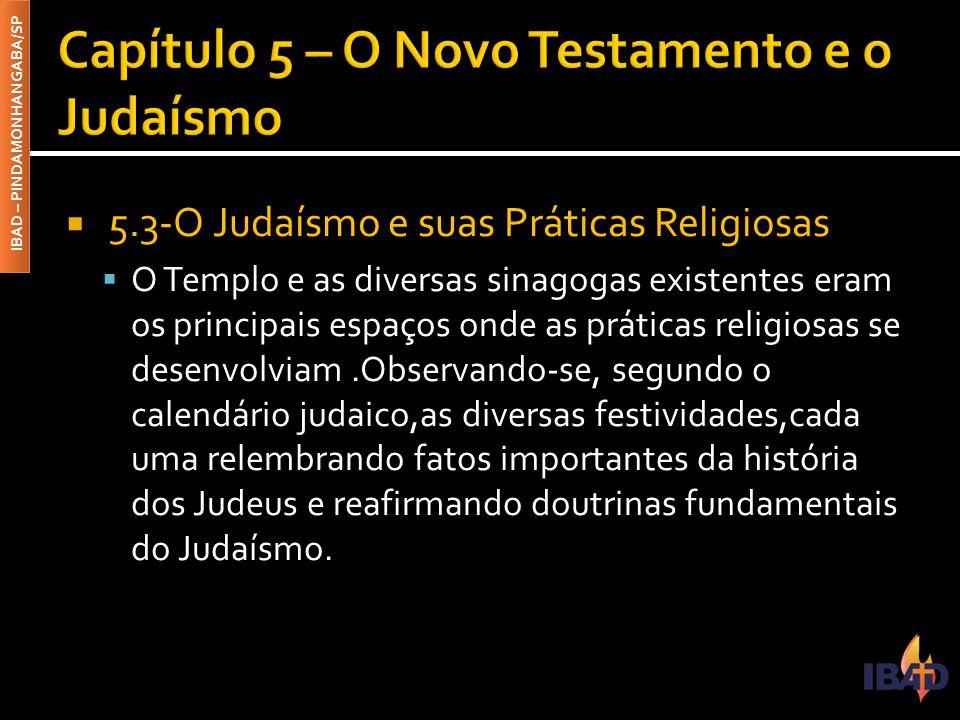 IBAD – PINDAMONHANGABA/SP  5.3-O Judaísmo e suas Práticas Religiosas  O Templo e as diversas sinagogas existentes eram os principais espaços onde as