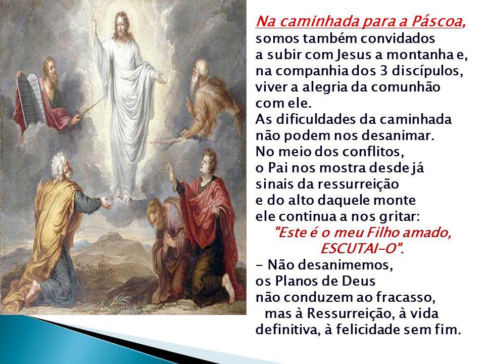 A transfiguração de Jesus é uma Catequese que revela aos discípulos e a nós Quem é Jesus: o FILHO AMADO DE DEUS: Um novo MOISÉS que dá ao seu povo uma NOVA LEI e através de quem Deus propõe aos homens uma NOVA ALIANÇA As figuras de Elias e Moisés ressaltam que a Lei e as Profecias são realizadas plenamente em Jesus.