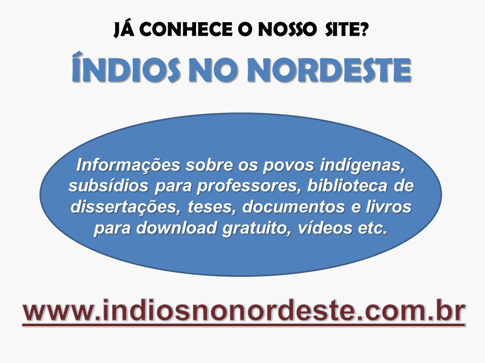 Informações sobre os povos indígenas, subsídios para professores, biblioteca de dissertações, teses, documentos e livros para download gratuito, vídeo