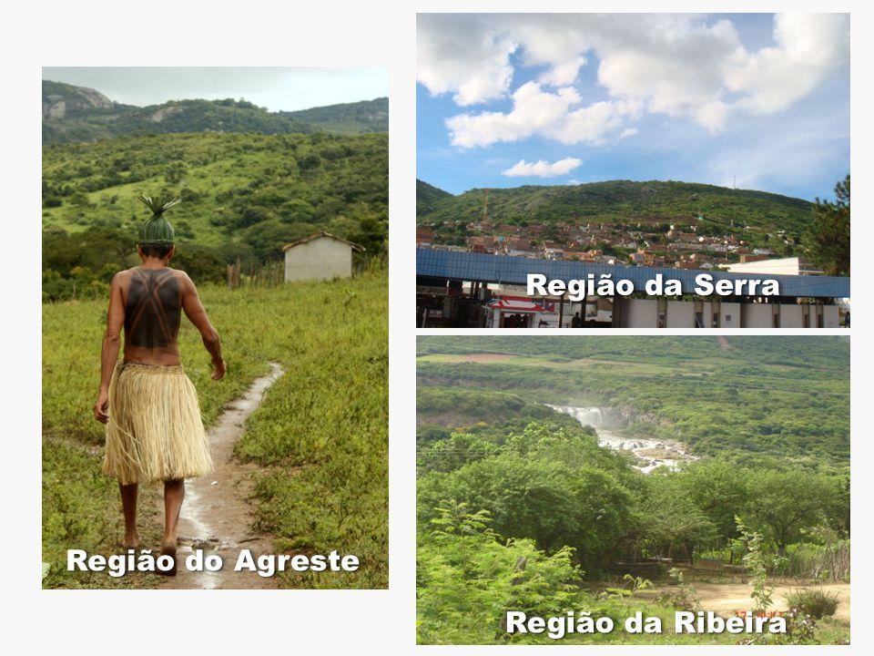 Região do Agreste Região da Ribeira Região da Serra