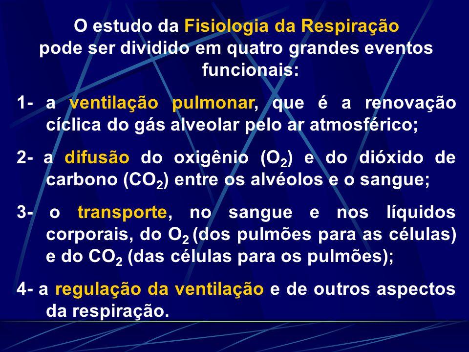 O estudo da Fisiologia da Respiração pode ser dividido em quatro grandes eventos funcionais: 1- a ventilação pulmonar, que é a renovação cíclica do gá