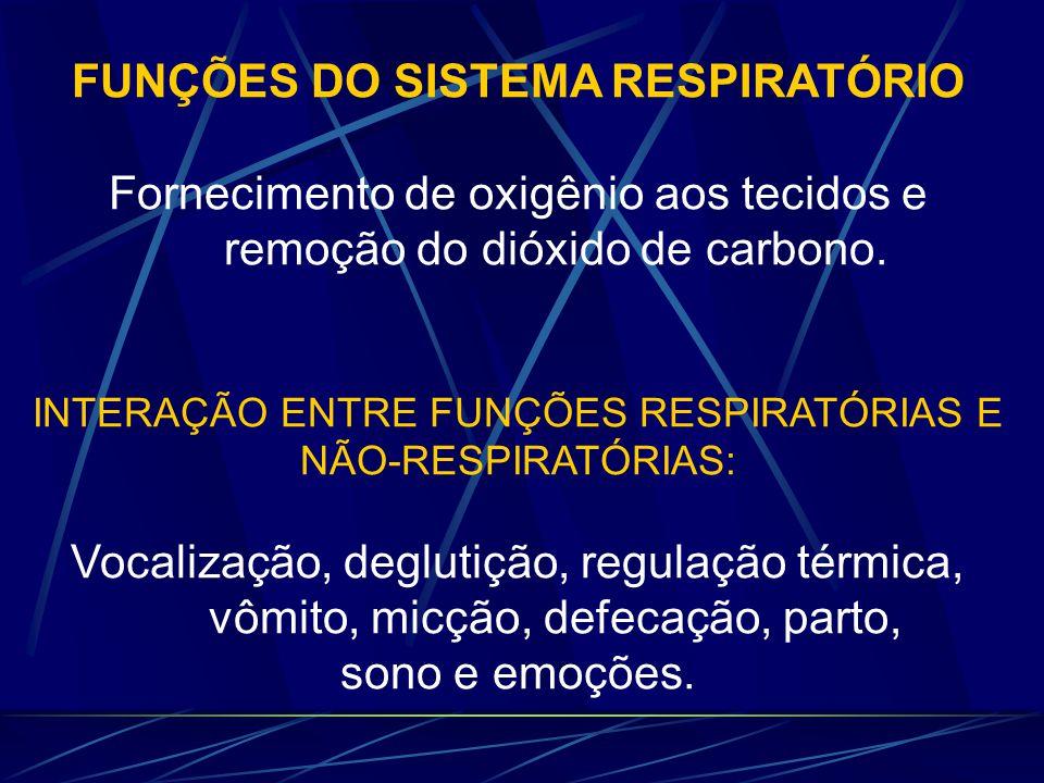 FUNÇÕES DO SISTEMA RESPIRATÓRIO Fornecimento de oxigênio aos tecidos e remoção do dióxido de carbono. INTERAÇÃO ENTRE FUNÇÕES RESPIRATÓRIAS E NÃO-RESP