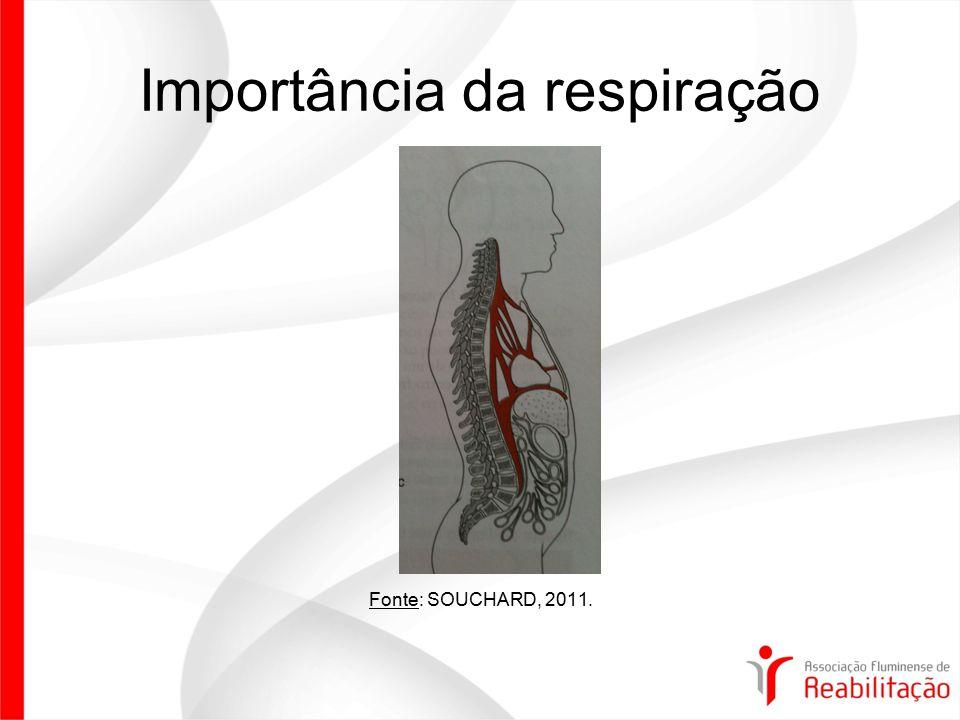 Importância da respiração Fonte: SOUCHARD, 2011.