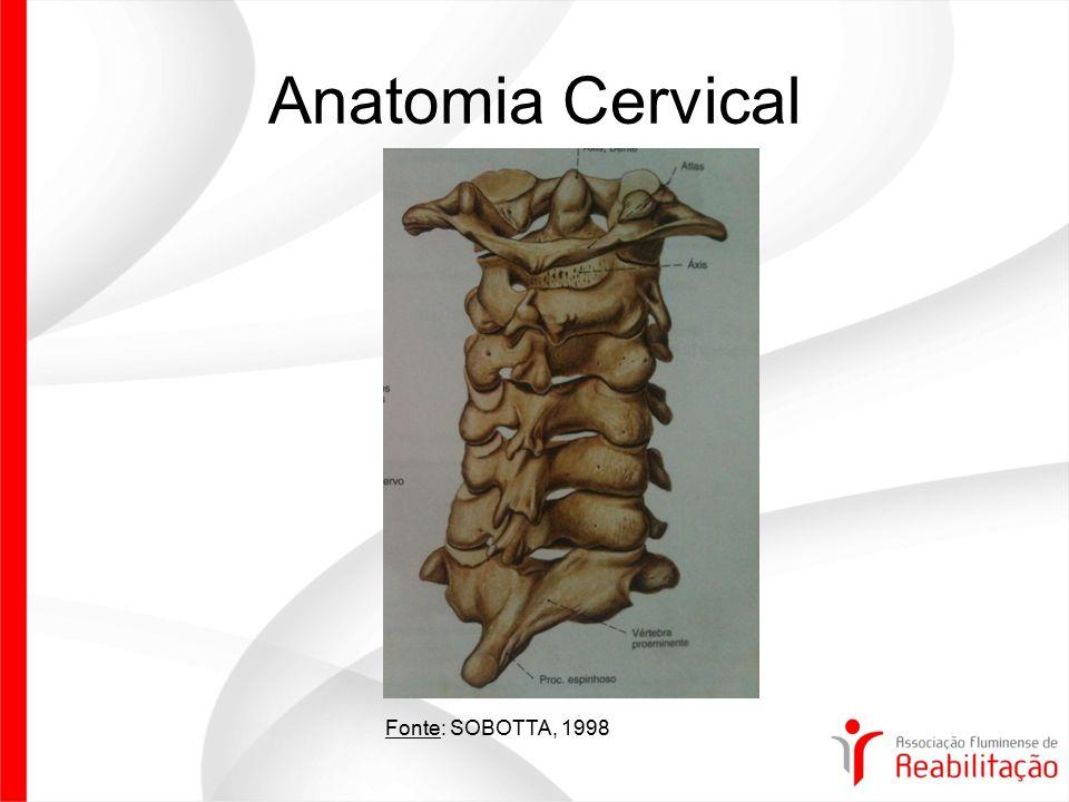 Anatomia Cervical Fonte: SOBOTTA, 1998